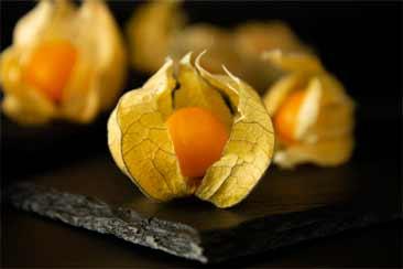 физалис, ягода инков, мыс крыжовник, ягода поха, просто золотые ягоды, томатилло, китайский фонарь, молотая вишня