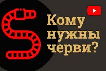 Видео: Кому нужны черви? Траварт travart.ru