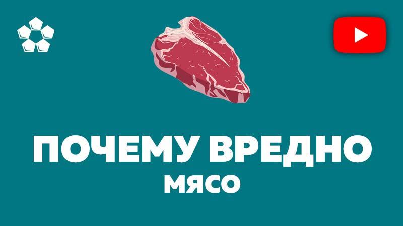 видео вред мяса