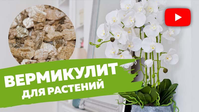 видео вермикулит для растений