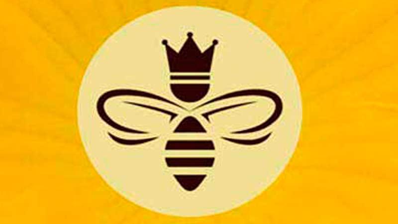Спасаем пчёл — Спасём будущее…