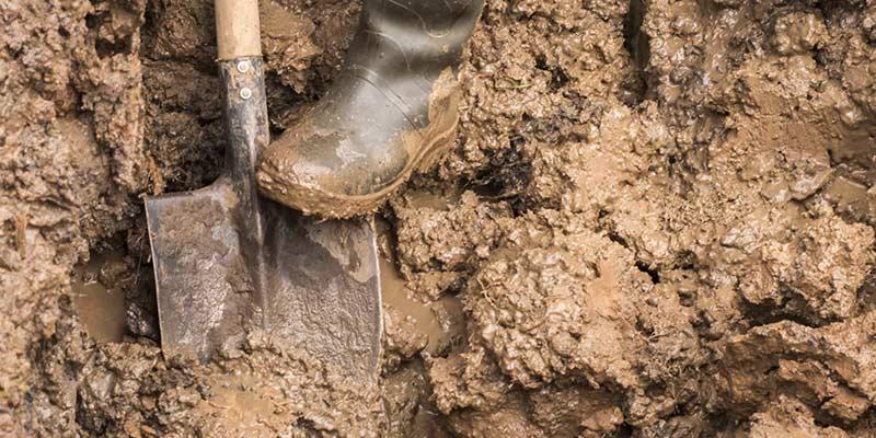 глинистая почва осенью