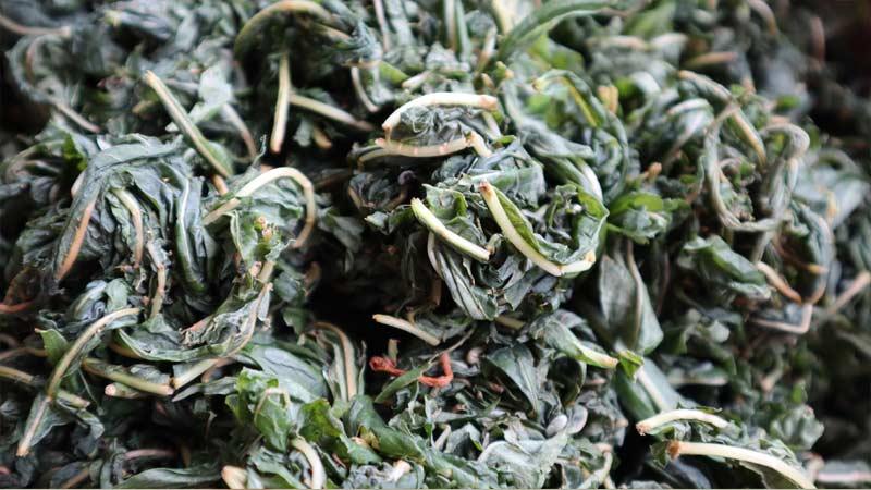 Химический состав копорского чая