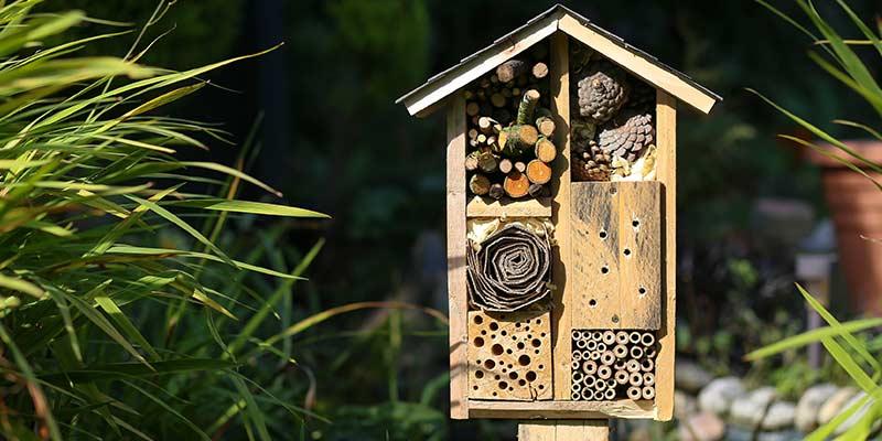 Домик для диких пчёл