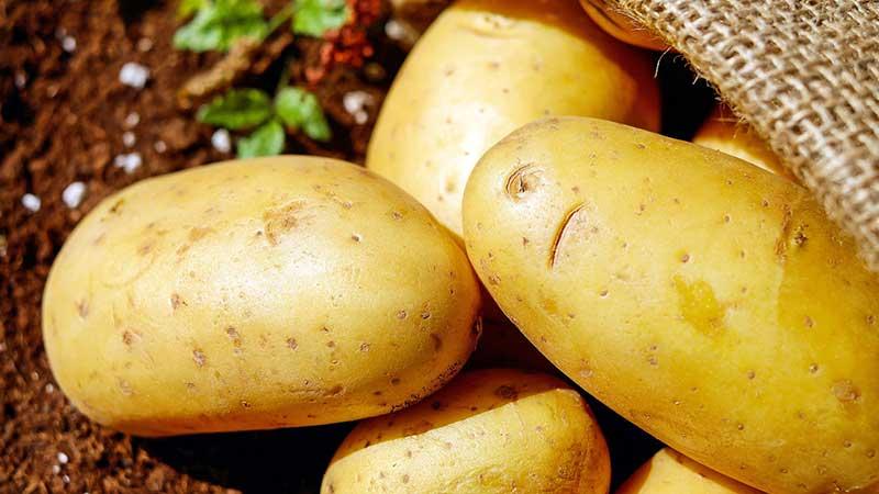 12 полезных свойств картофеля