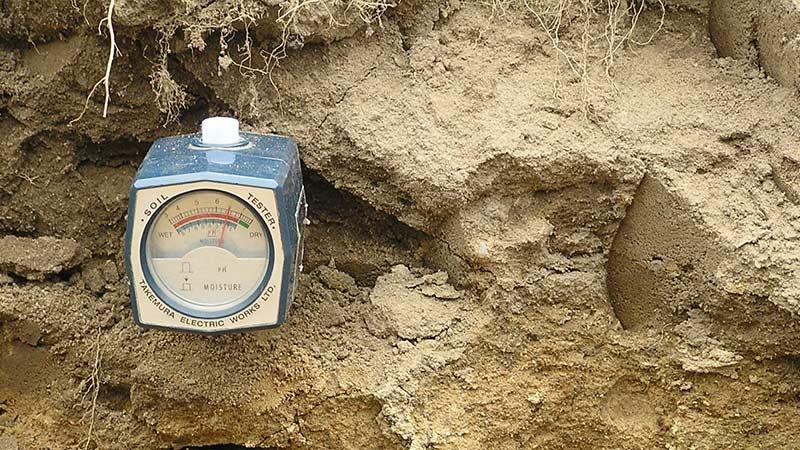 Кислотность почвы - определяем и корректируем