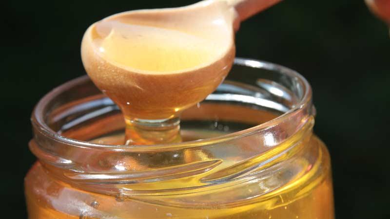 Купить горный мед