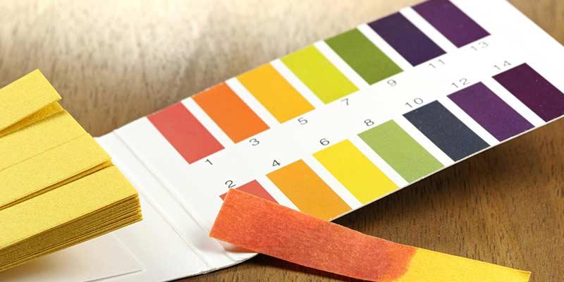 лакмусовая бумажка для определения кислотности почвы
