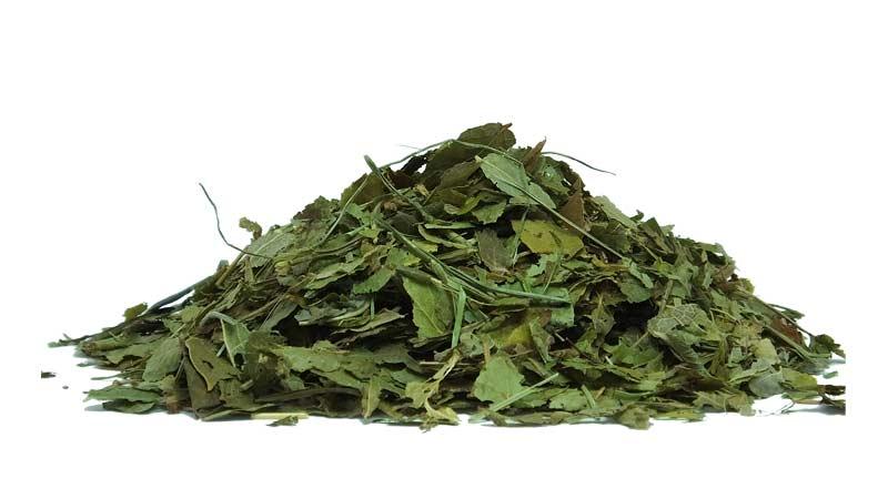 Лучший зеленый чай Траварт travart.ru