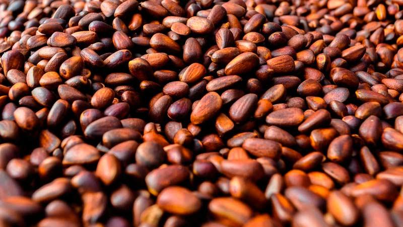 Не очищенные кедровые орехи