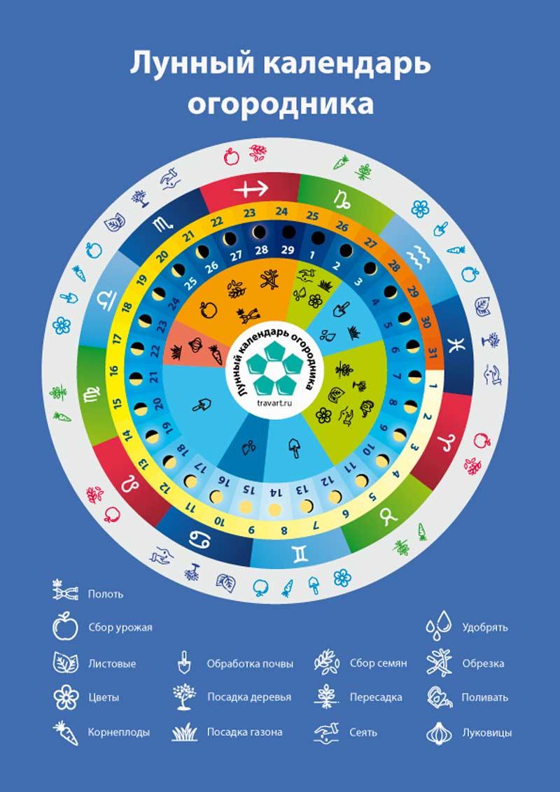 Первая страница календаря Траварт travart,ru