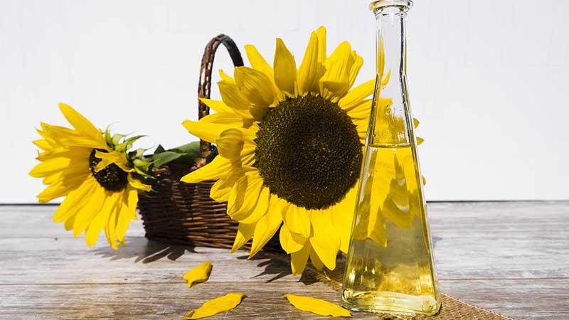 8 полезных свойств подсолнечного масла