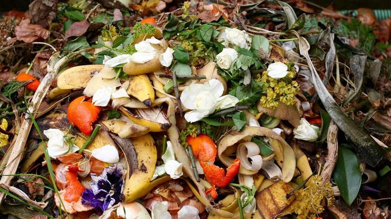 Получение биогаза из  отходов  Траварт