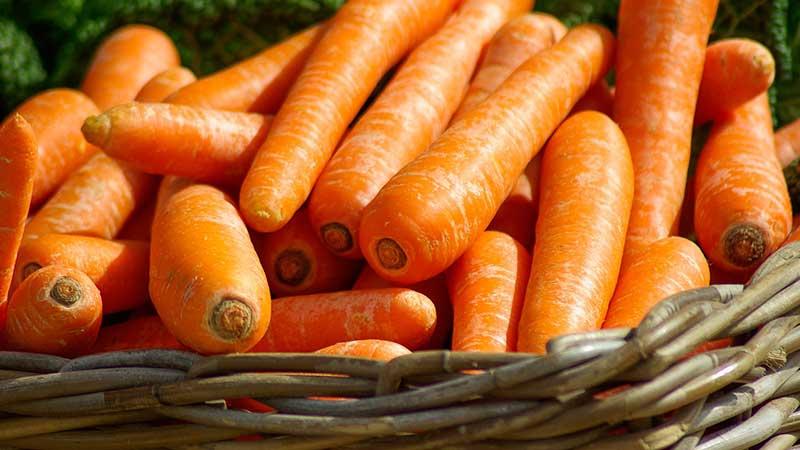 Морковь не только овощ, но и лекарство