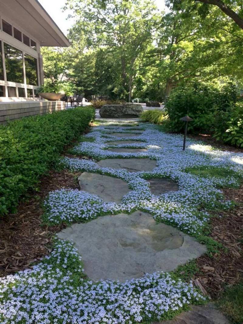 А почему бы в промежутках между камнями не посадить почвопокровные цветочки?