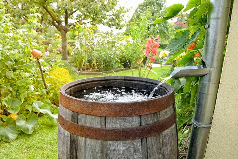 Бочка для сбора дождевой воды