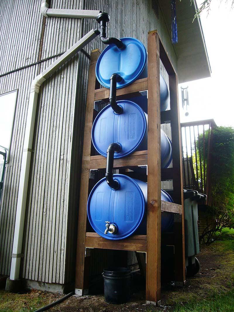 Простая система из трех бочек для сбора дождевой воды