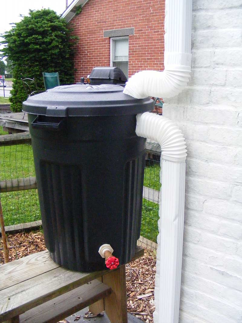 Пластиковый мусорный бак переоборудованный для сбора воды