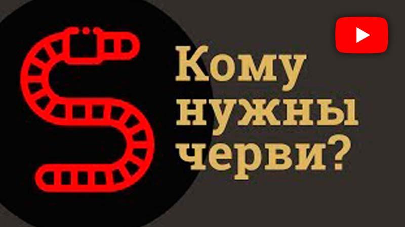 Кому нужны черви Траварт travart.ru