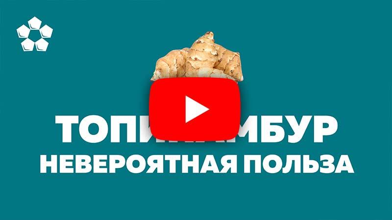 видео полезные свойства топинамбура